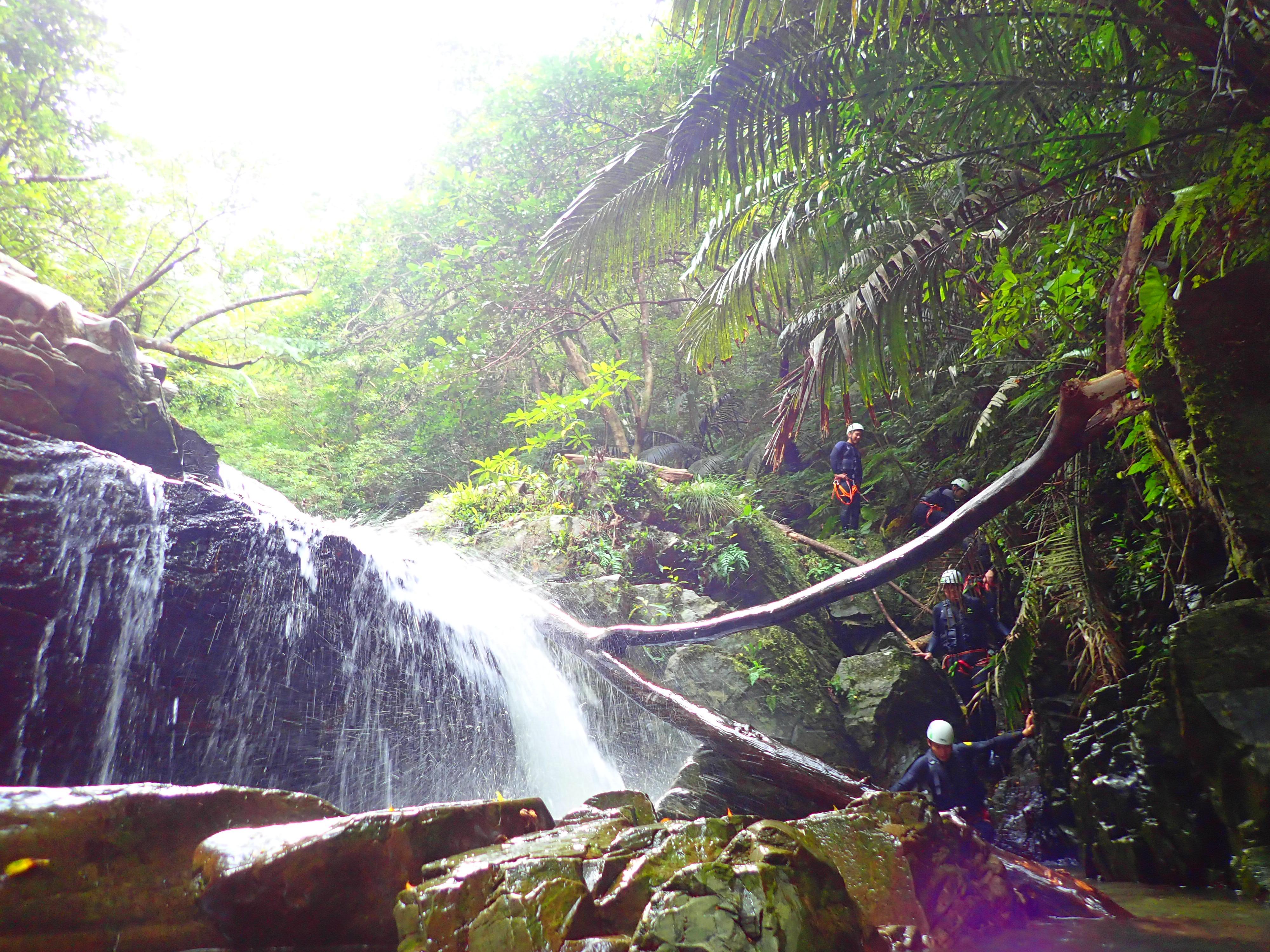 沖縄の名護のやんばるでシャワークライミングツアーに参加し滝を降りる