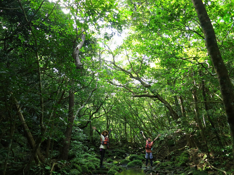 ピナイサーラの滝をトレッキング