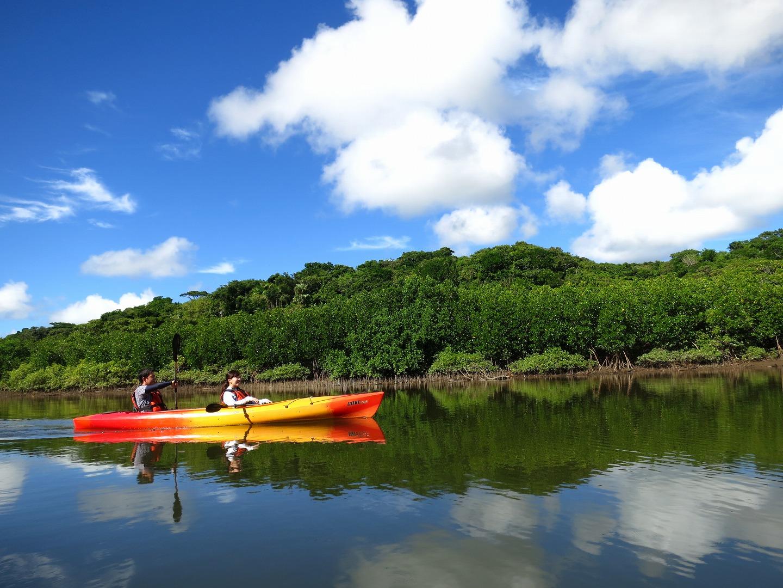 ヒナイ川をマングローブカヤックでクルージング